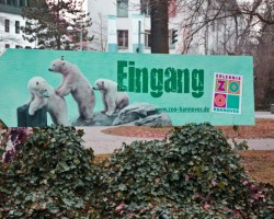 Zoo Hannover (2)